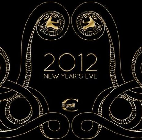 New Year's Eve 2012 at Just Cavalli club, Milan