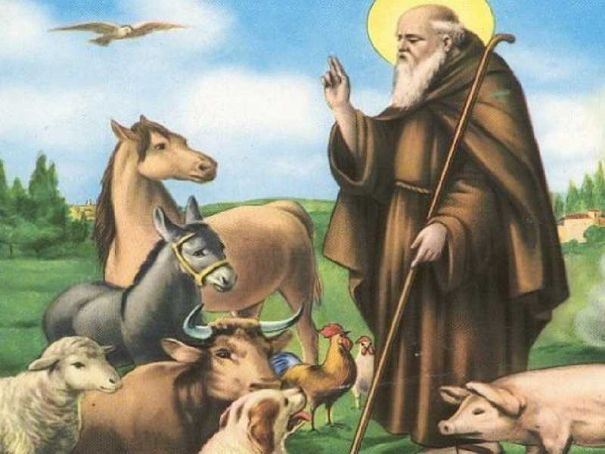 Milan priest blesses animals, owners