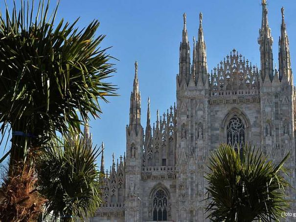 Milan divided over palms in Piazza del Duomo