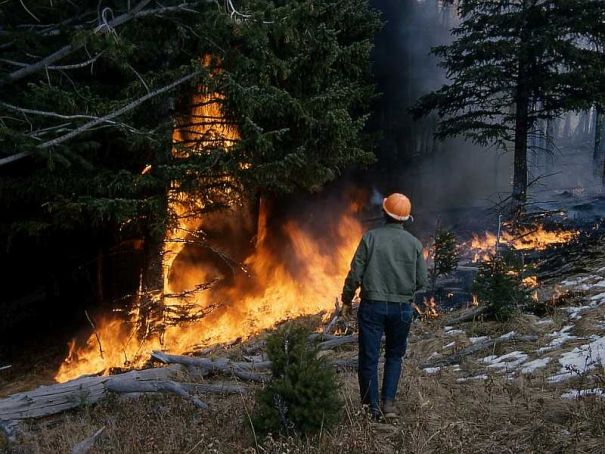 Lombardy pleads for emergency help against wildfires