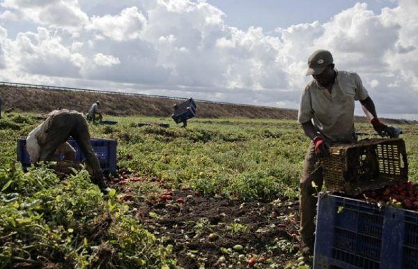 Migrant Workers Journey - image 2
