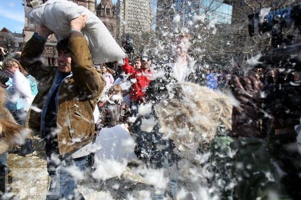 Pillow Fight Milano - image 2