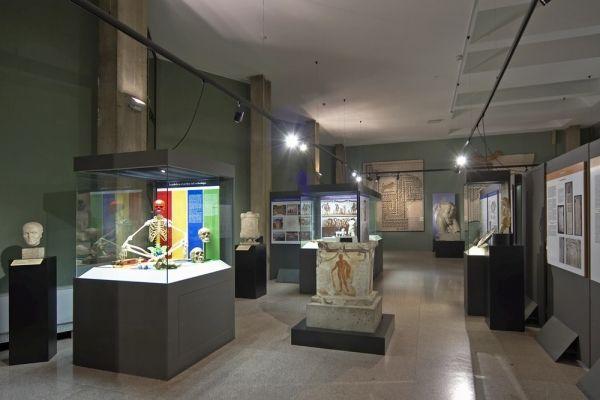 Milan museum prices to rise - image 2