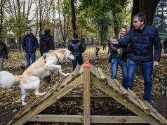 Two new dog parks open in Milan