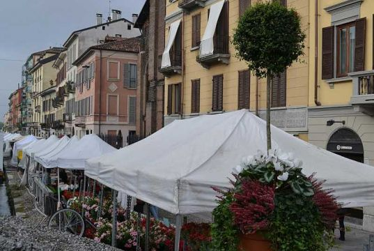 Autumn flowers and foods on Milan's Naviglio