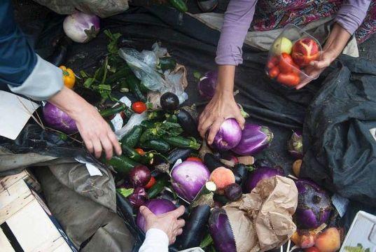 Milan opens new anti-waste food hub