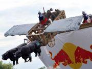 Red Bull Flugtag in Milan