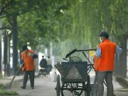 Pay Milan local taxes with work