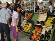 Milan farmers' markets a success