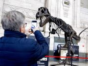 The Largest T- Rex in the world in Milan's Central Station